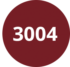 Rouge pourpre - RAL 3004