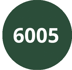 Vert mousse - RAL 6005